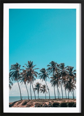 Palms And A Breeze Poster
